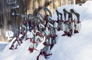 Snowshoes-990x655